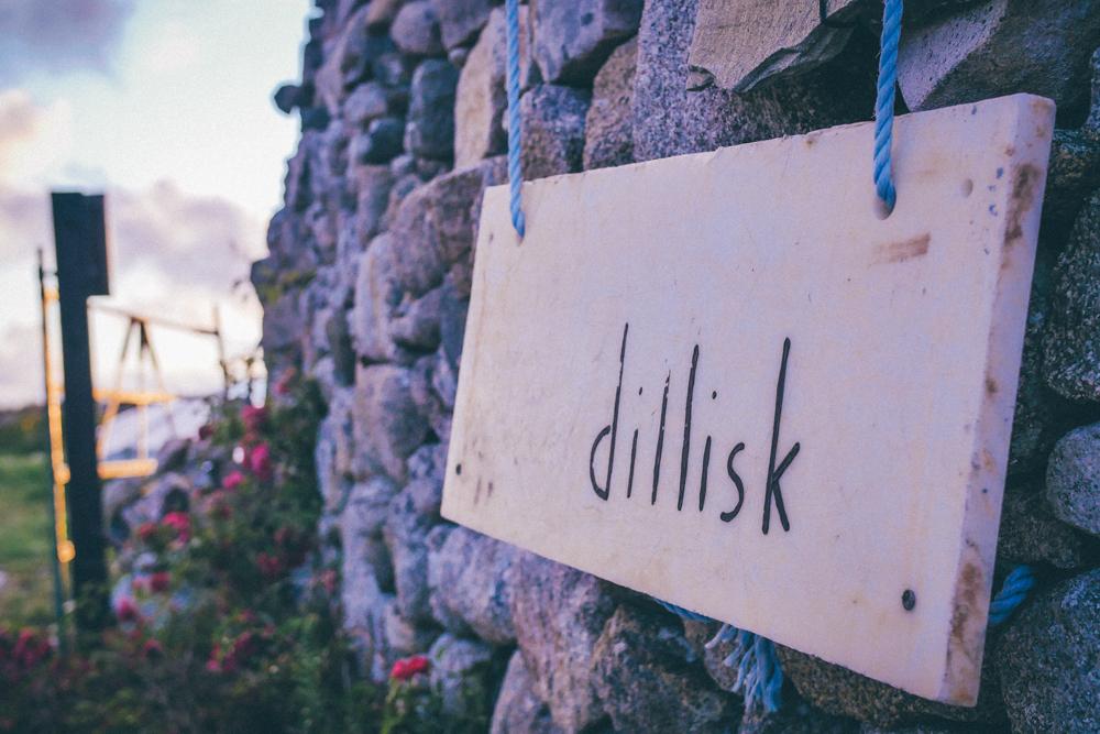 dillisk-food-project-connemara-event