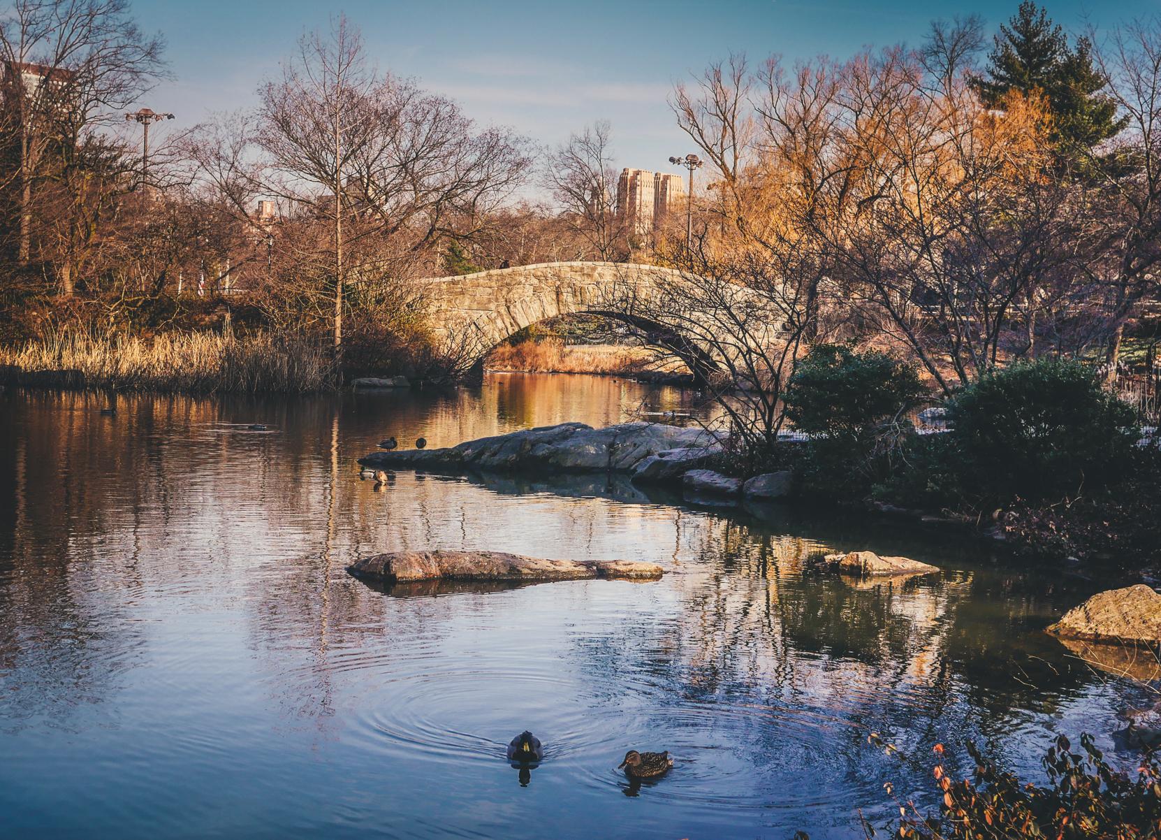 best-photo-spots-of-central-park-
